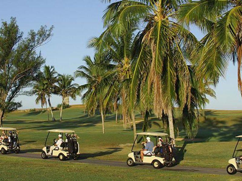 85melialasamericas-golf